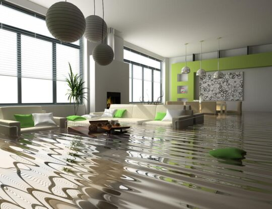 Emergency Water Removal-West Palm Beach Mold Remediation & Water Damage Restoration Services-We offer home restoration services, water damage restoration, mold removal & remediation, water removal, fire and smoke damage services, fire damage restoration, mold remediation inspection, and more.