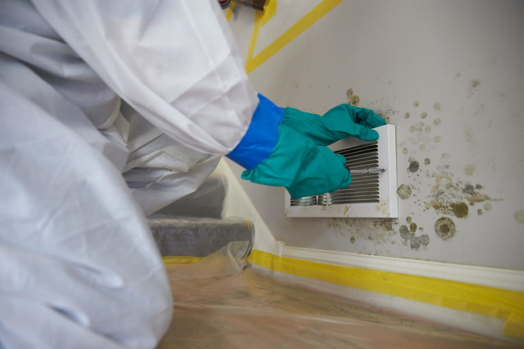 How to Test for Mold-West Palm Beach Mold Remediation & Water Damage Restoration Services-We offer home restoration services, water damage restoration, mold removal & remediation, water removal, fire and smoke damage services, fire damage restoration, mold remediation inspection, and more.