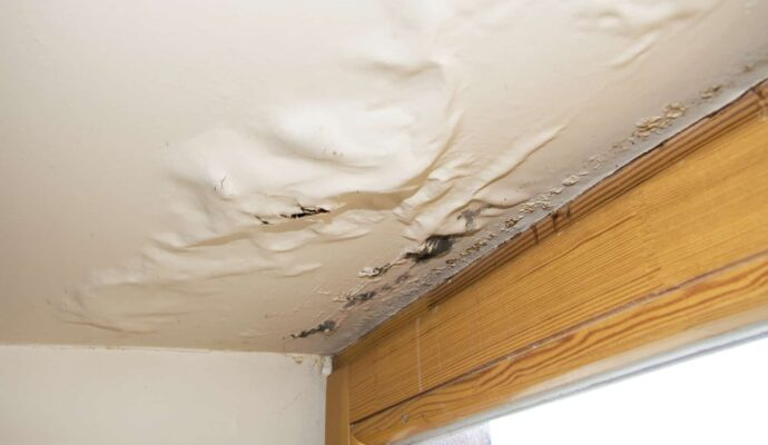 Jupiter-West Palm Beach Mold Remediation & Water Damage Restoration Services-We offer home restoration services, water damage restoration, mold removal & remediation, water removal, fire and smoke damage services, fire damage restoration, mold remediation inspection, and more.