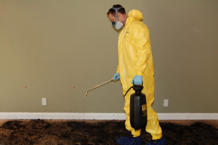 Services-West Palm Beach Mold Remediation & Water Damage Restoration Services-We offer home restoration services, water damage restoration, mold removal & remediation, water removal, fire and smoke damage services, fire damage restoration, mold remediation inspection, and more.