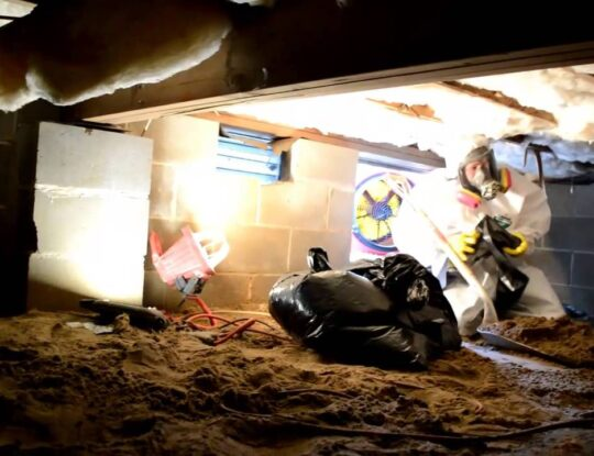 Sewage Clean Up-West Palm Beach Mold Remediation & Water Damage Restoration Services-We offer home restoration services, water damage restoration, mold removal & remediation, water removal, fire and smoke damage services, fire damage restoration, mold remediation inspection, and more.